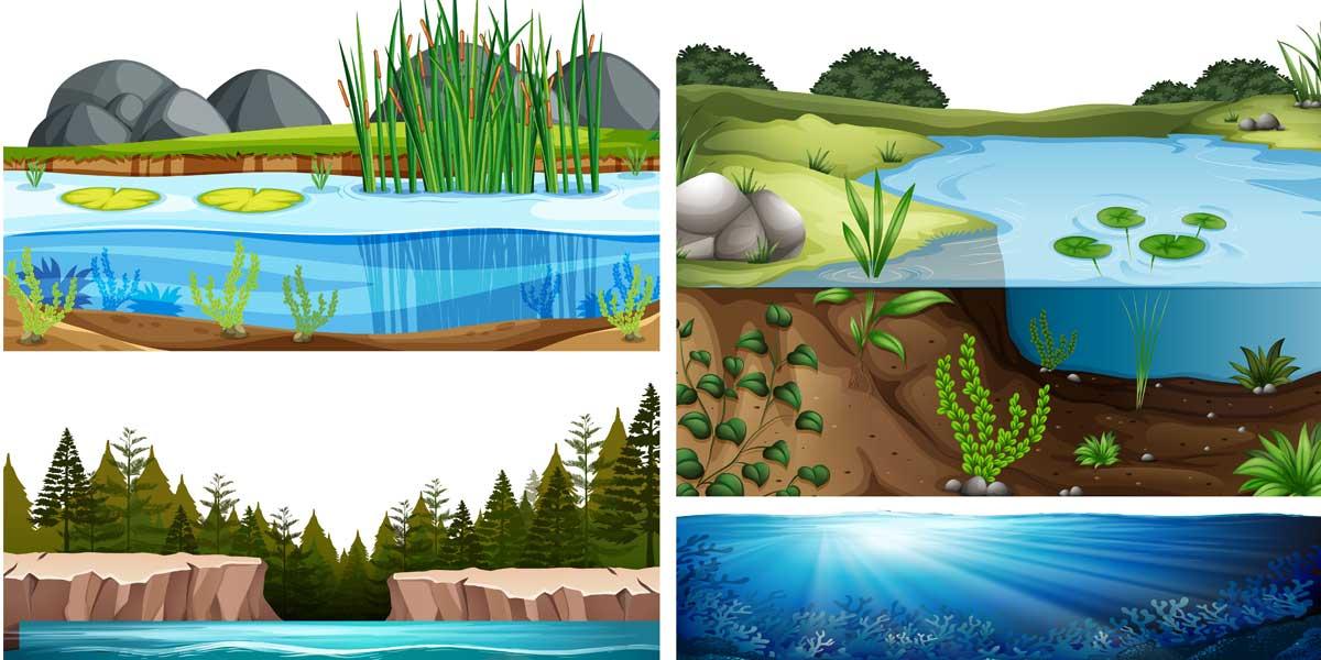 resumen los ecosistemas de la tierra 2 ESO