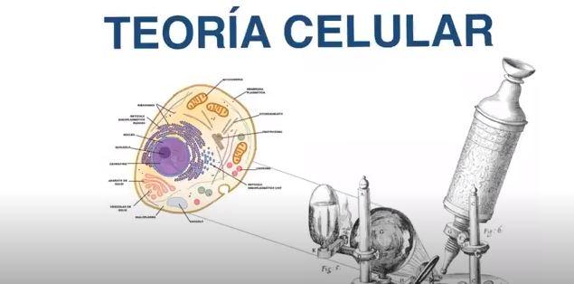 teoria cecular biologia 1 Eso