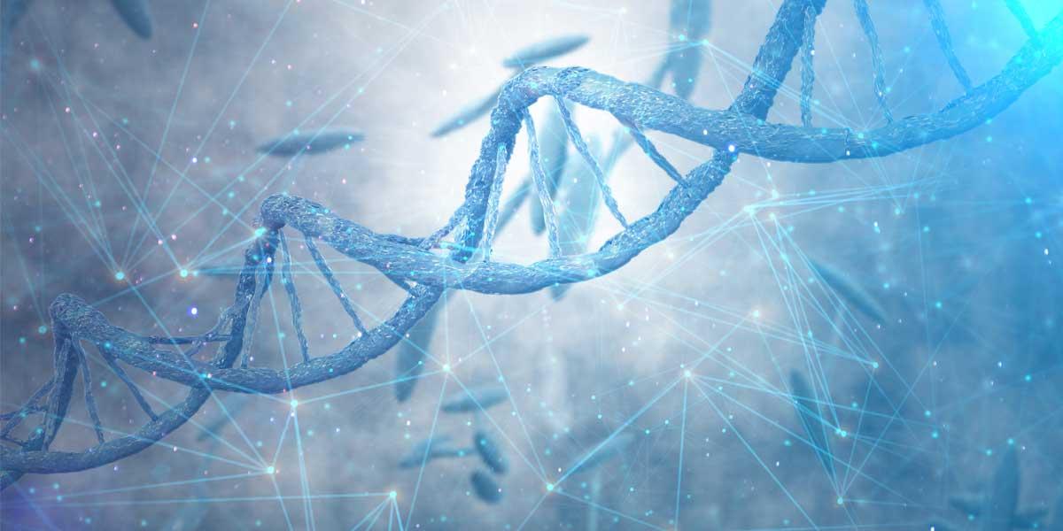 Genética Humana Vídeo con ejercicios prácticos de 4 de ESO