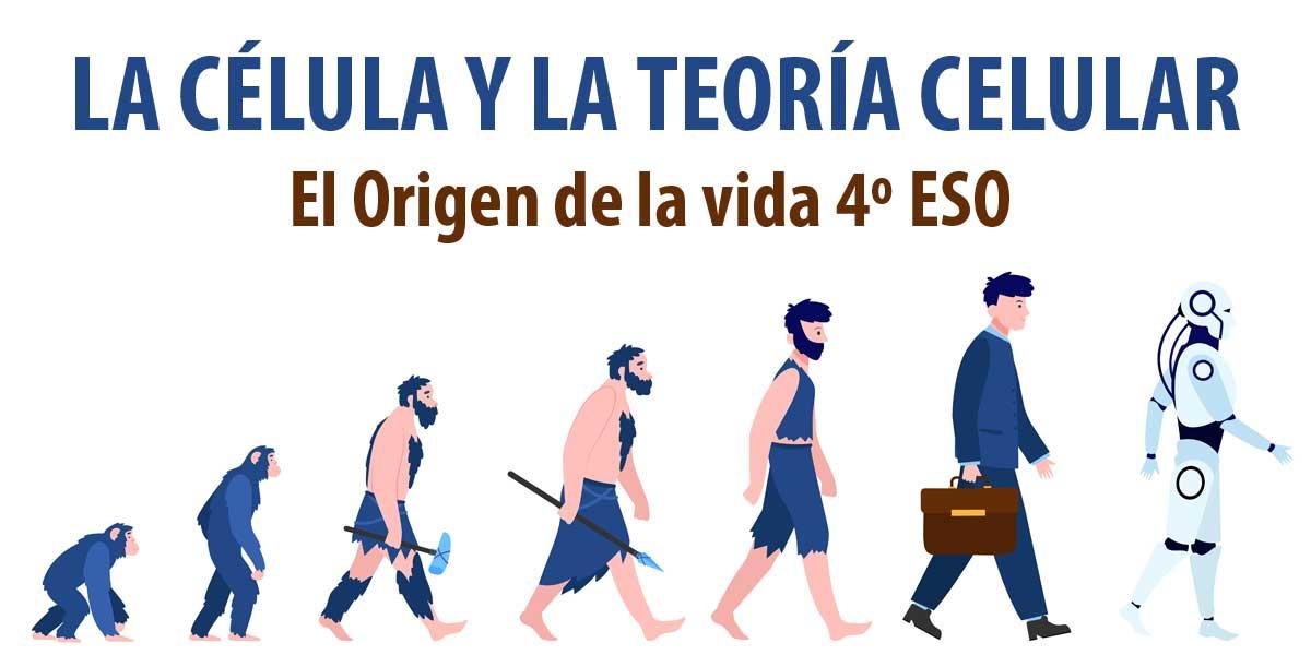 Fichas de trabajo con ejercicios prácticos LA CÉLULA Y LA TEORÍA CELULAR 4º ESO