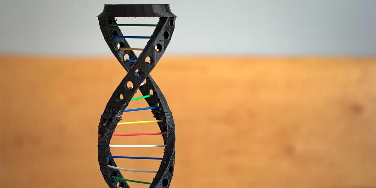 28 Problemas de Genética Resueltos 4º ESO